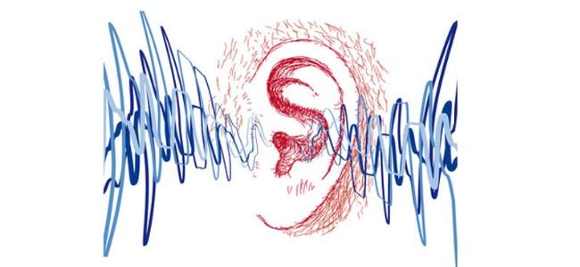 Typy ludzkiego słuchu